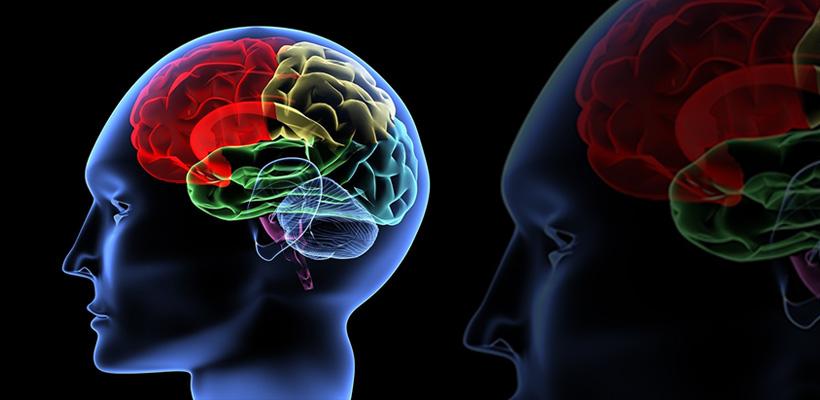سلامت مغزی